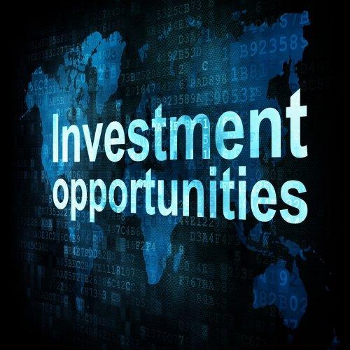 Dịch vụ Tư vấn và Thủ tục Đầu tư